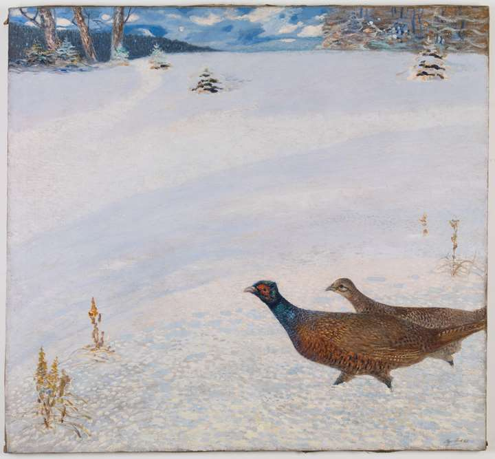 PHEASANTS IN A WINTER LANDSCAPE