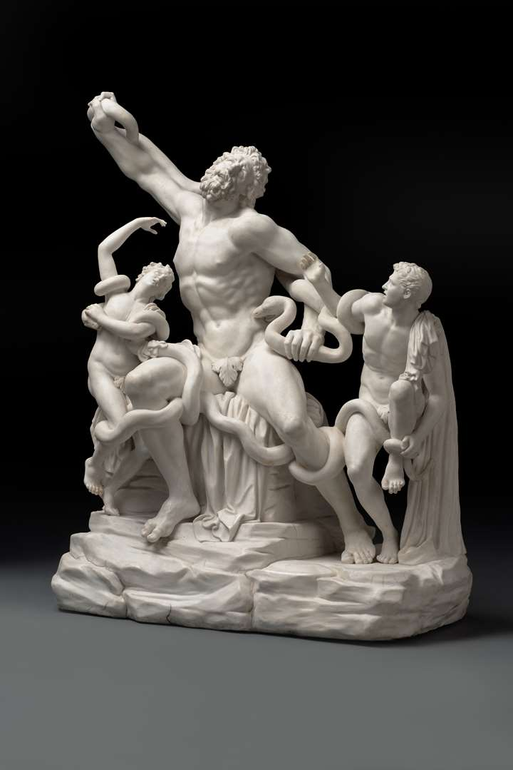 The Tagliolini Laocoon group