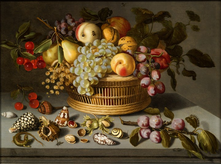 Fruit Still-Life with shells and insects.