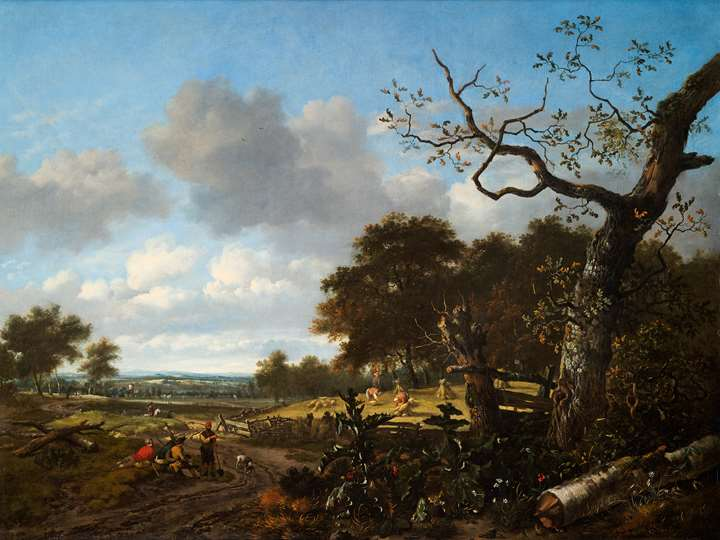 Wooded Landscape with a cornfield.