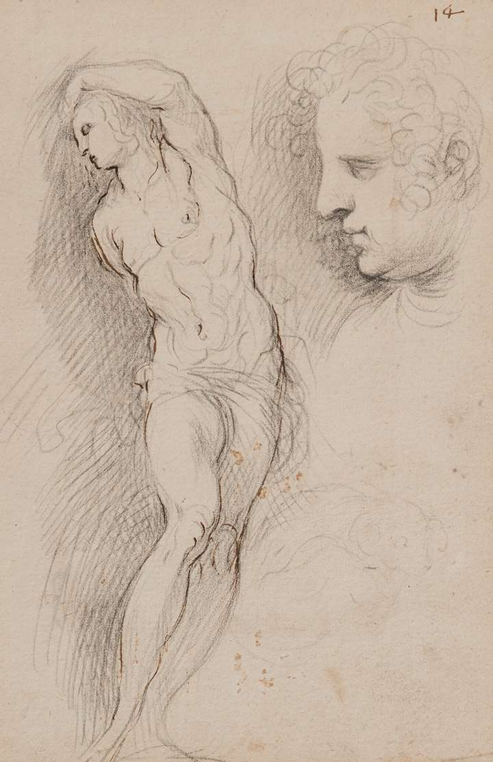 Portrait of the artist's wife Adriana, study for St. Sebastian, study of a sleeping dog