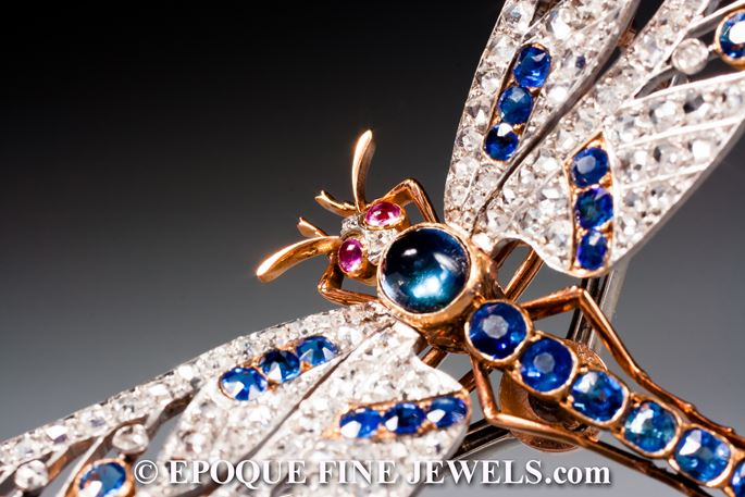 Joseph Nivelon - A magnificent antique sapphire, ruby and diamond dragonfly brooch 'en tremblant' | MasterArt