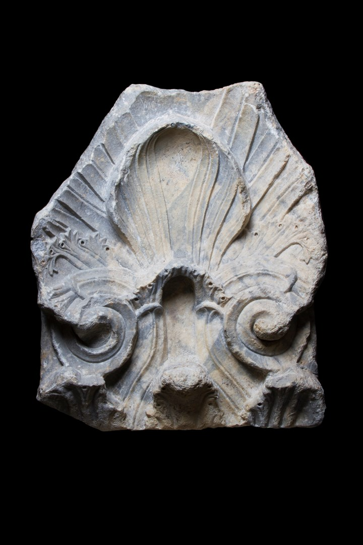 Acanthus Fragment