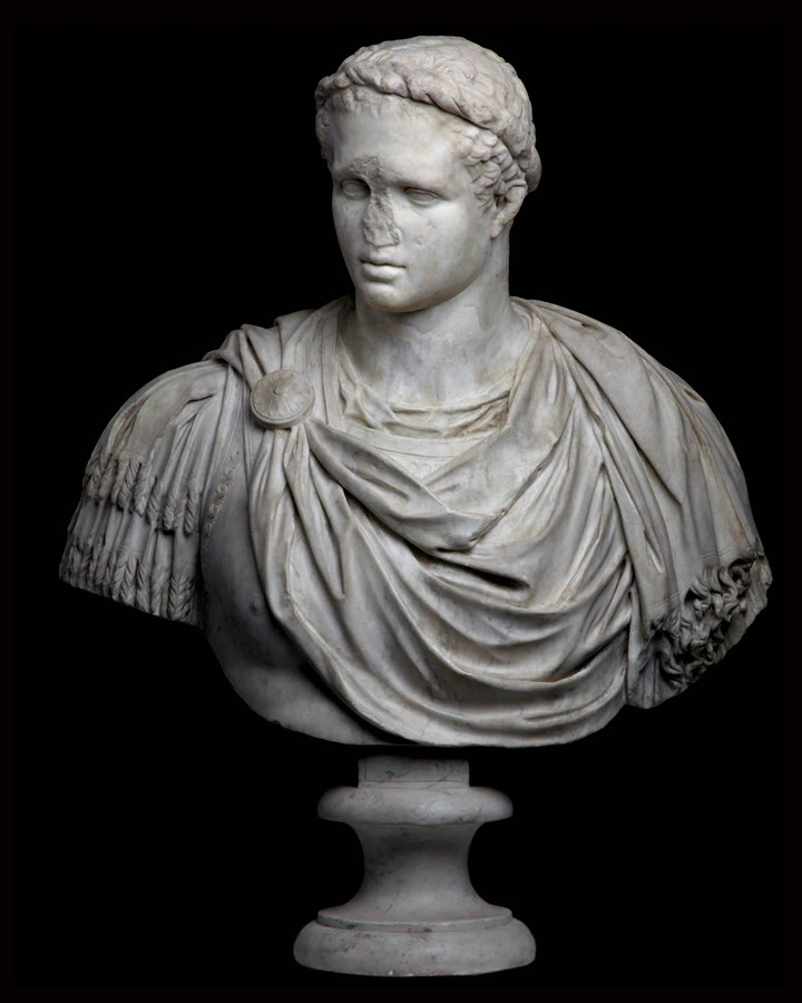 Bust of a Young Herakles