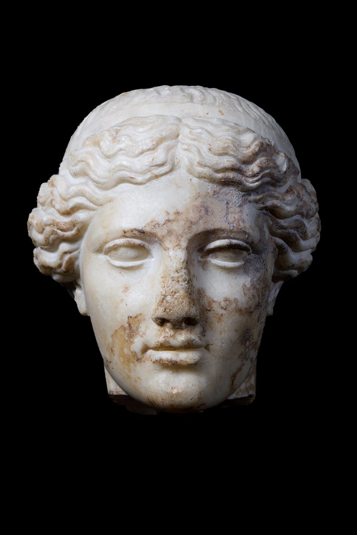 Head of Venus Genitrix