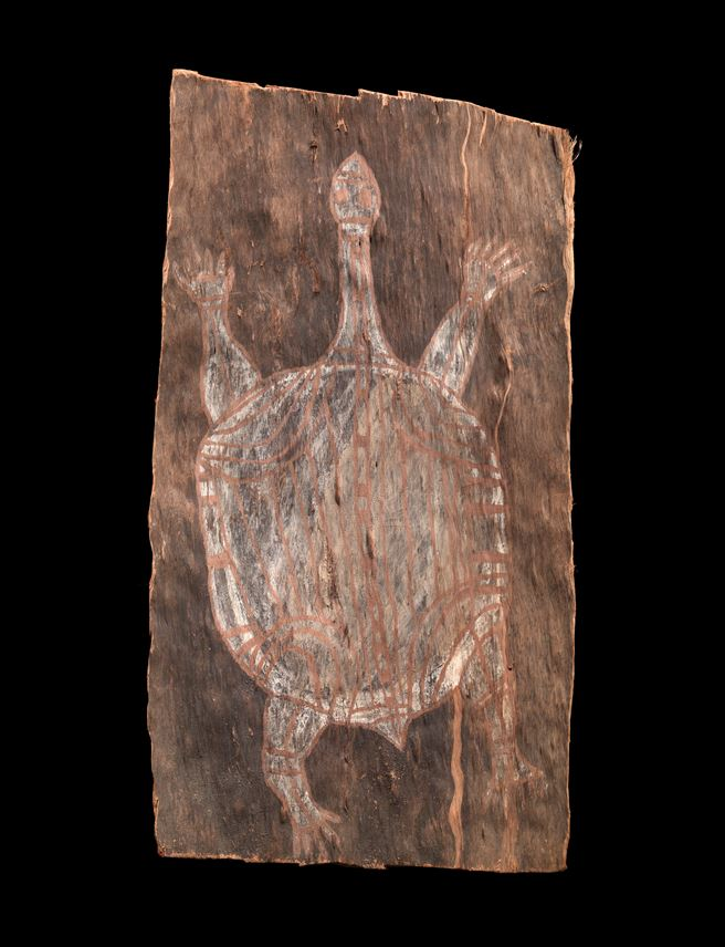 """Old Long Necked Turtle"" 