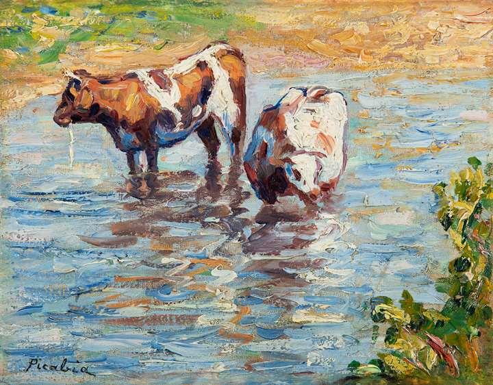 Deux vaches s'abreuvant
