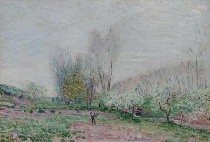 Les Pommiers en fleurs à Moret-sur-Loing