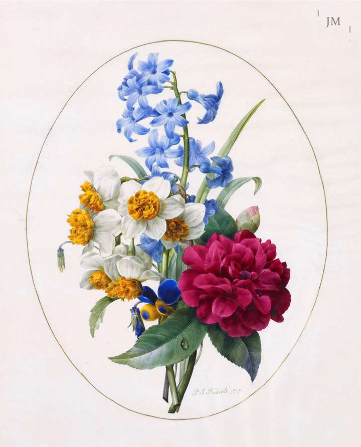 A Sprig of Spring Flowers – hyacinth, narcissi, camellias and a pansy
