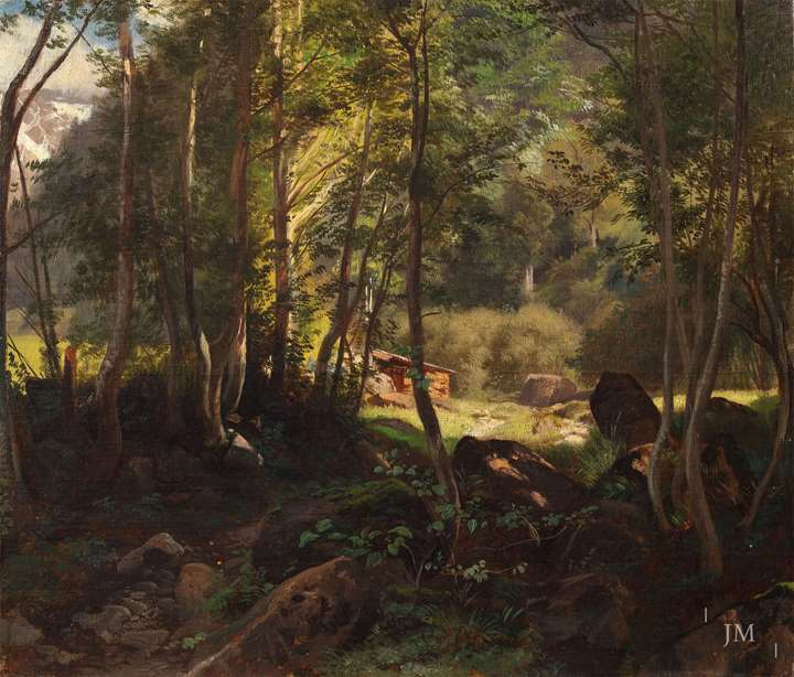 Waldinneres (a forest interior) near Glarus