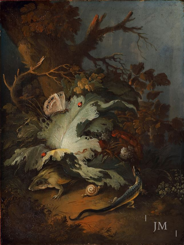 Philip Reinagle - A forest floor with a lizard, frog, snail and insects | MasterArt