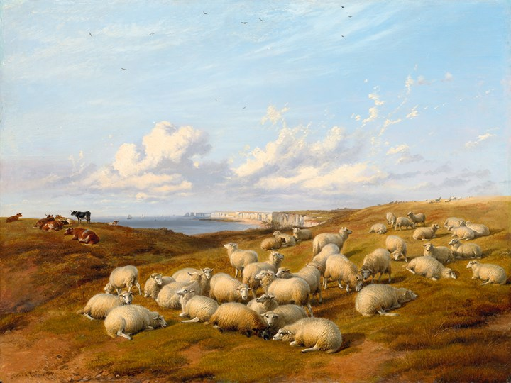 Sheep and Cattle on the Coast, near Beachy Head