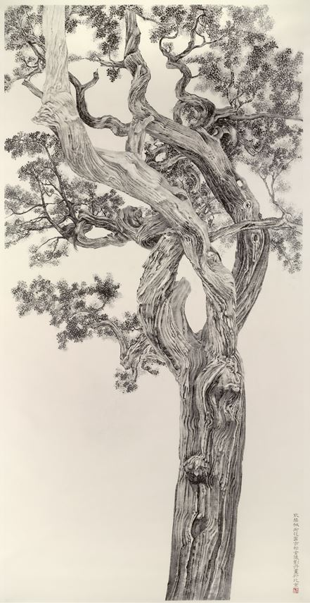 Dan Liu - Old Cypress from the Forbidden City | MasterArt