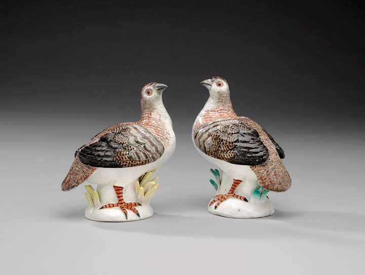 A pair of partridges