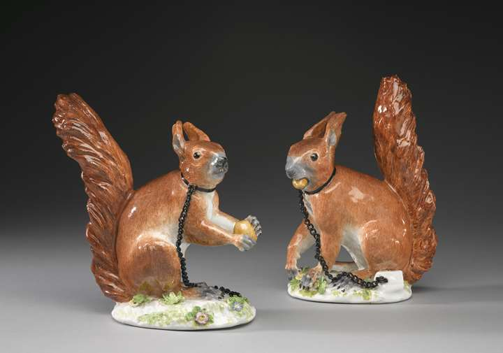 A pair of squirrels