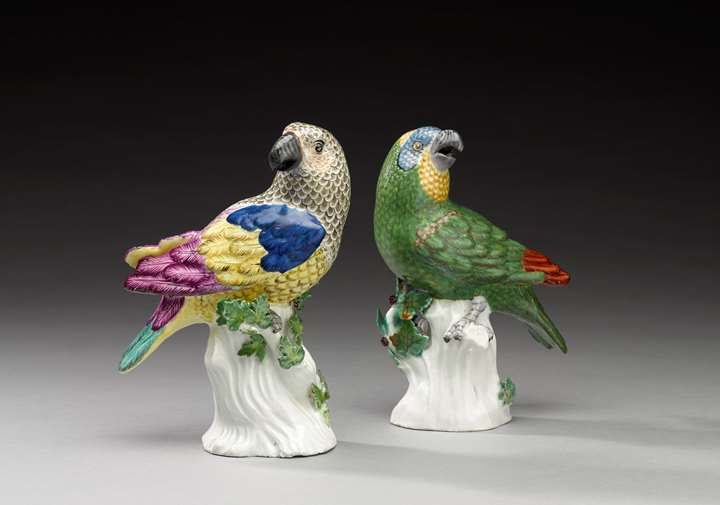 "Two parrots ""medium sort"""