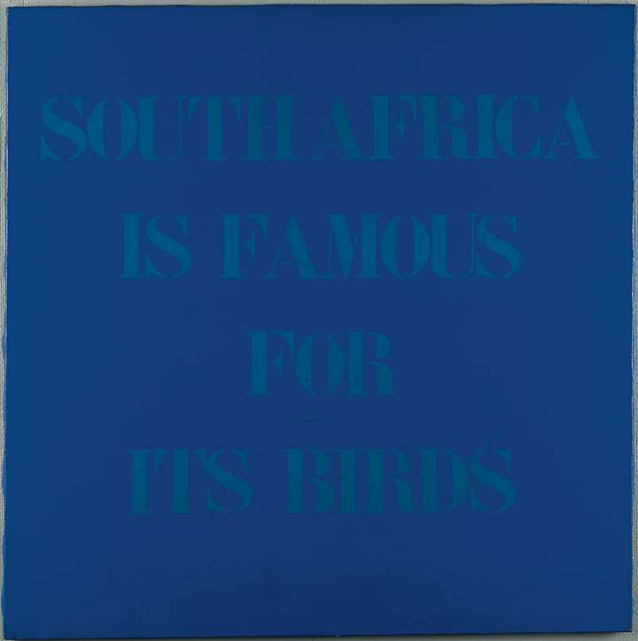South Africa is famous fot its birds