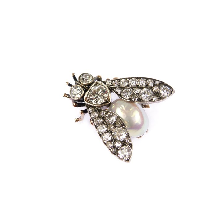 Antique diamond and pearl fly brooch