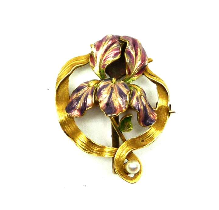 Antique gold, enamel and pearl iris brooch