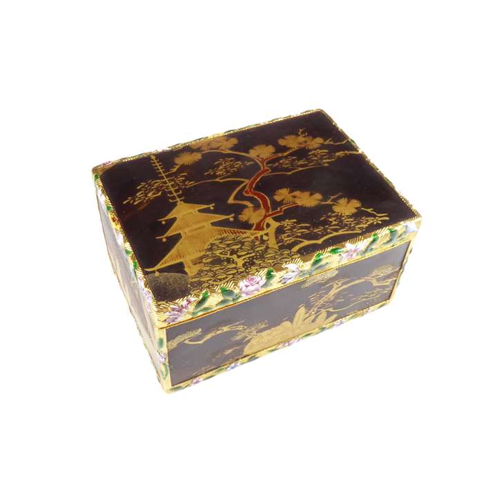 Louis XV gold and enamel mounted Japanese lacquer snuff box, rectangular with cagework mounts,