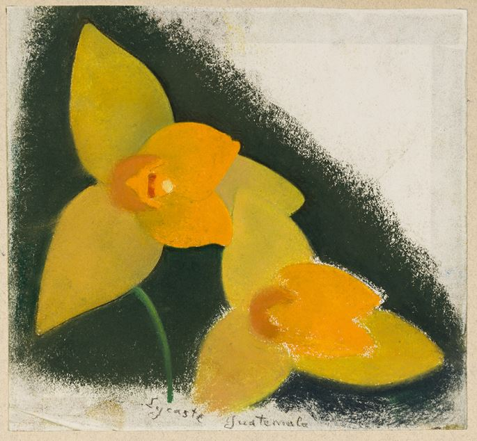 Simon BUSSY - Five Studies of Orchids and other Flowers | MasterArt