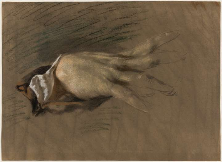 Study of a Woman's Right Hand
