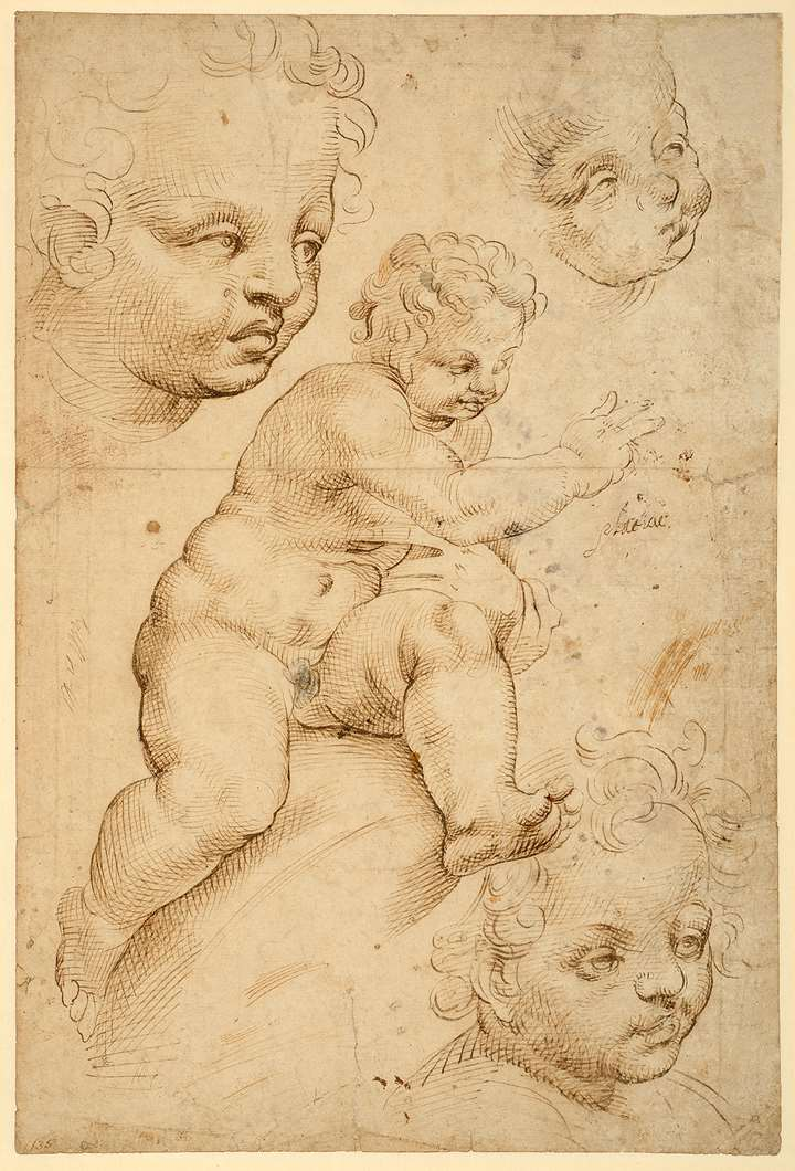 Studies of a Young Nude Child