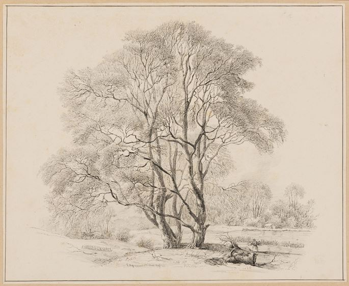 Carl Ludvig MESSMANN - Study of Two Trees by a Lake or Pond  | MasterArt