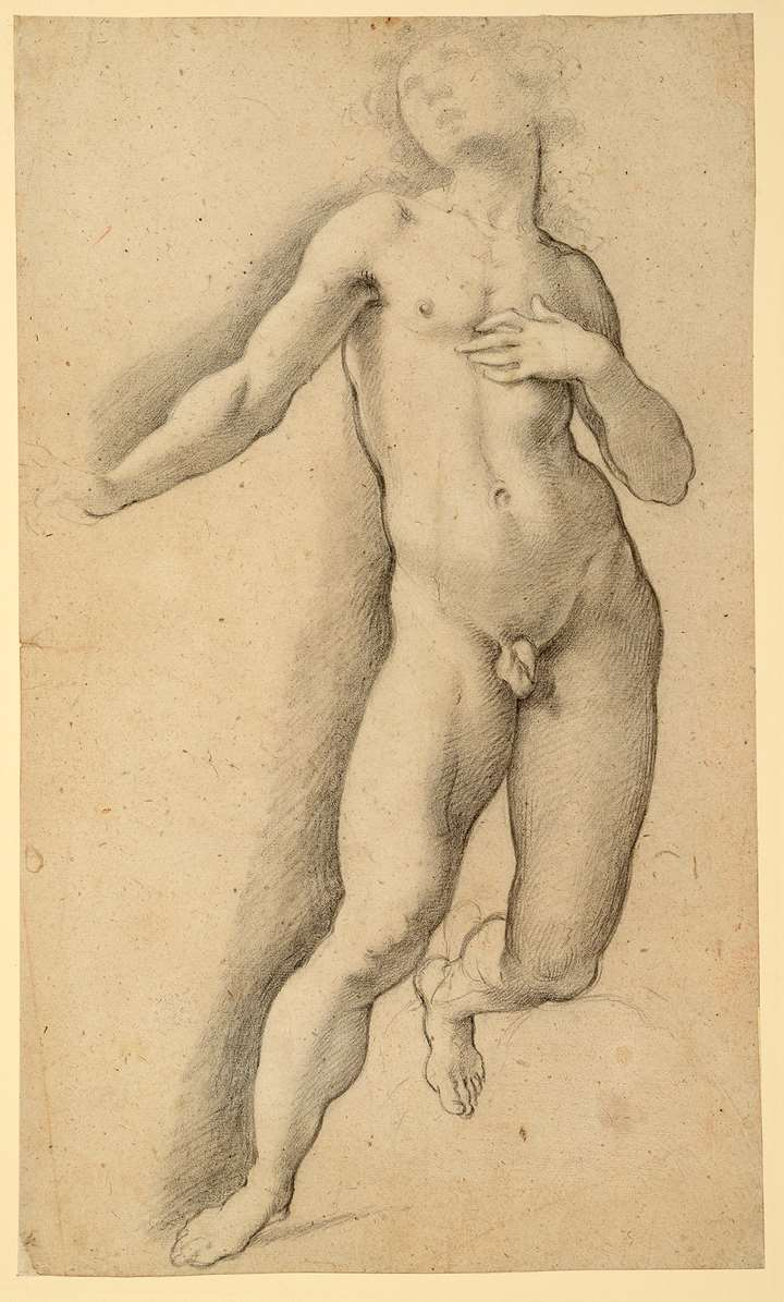 A Kneeling Male Nude