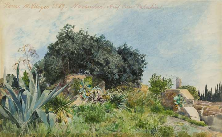 Landscape on the Palatine Hill in Rome