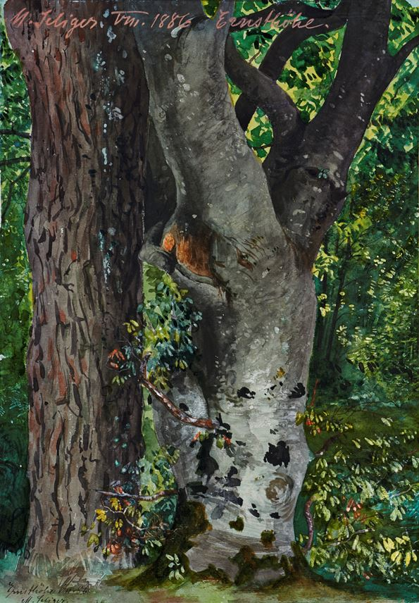 Max SELIGER - Study of Trees | MasterArt