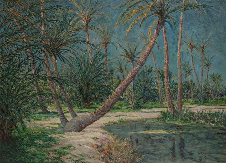 Palmeraie Saharienne, Oasis de Doucen