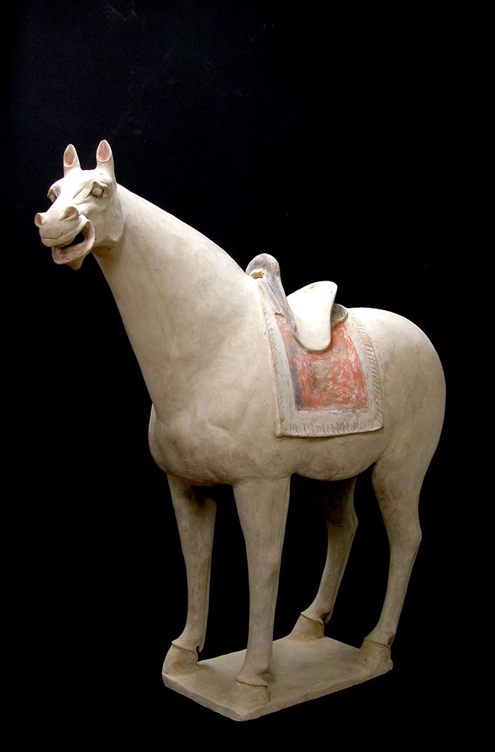 Large Terracotta Saddled Horse - Tang Dynasty