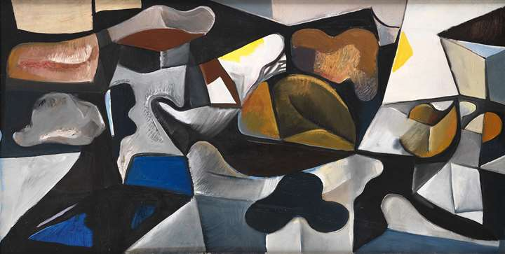 Composition with Organic Forms and Figure